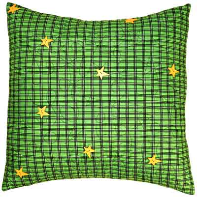 Happy Trails Fat Quarter Pillow